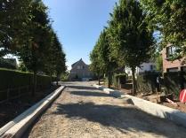 De bomen in Anemonengaarde kunnen behouden blijven